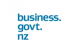 business govt nz