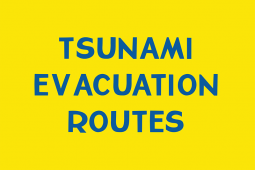 Tsunami Evacuation Routes